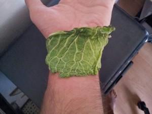 Benda vegetale di cavolo