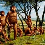 L'uomo si nutriva di sola frutta – Studio paleontologico lo dimostra.