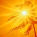 La luce solare, è la medicina gratuita più potente che esiste.