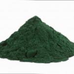 Spirulina: l'alga dei vegani