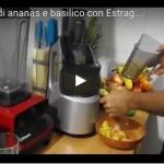 Estratto di ananas e basilico con Estraggo Pro